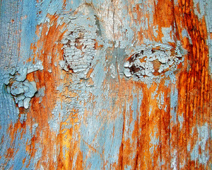 Free_wood_texture