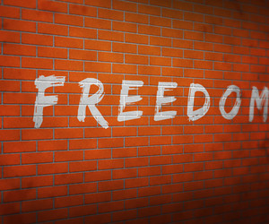 Freedom On Brick Wall