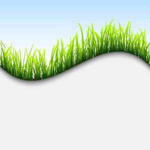 Fresh Background With Grass