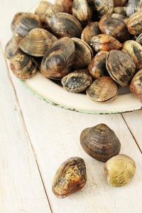 Fresh Clam Shell Fish