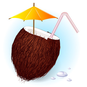 Fresh Coconut Cold Drink. Vector.