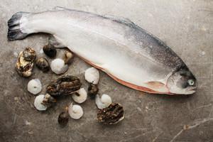 Fresh Fish And Shellfish