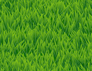 Fresh Grass Seamless Vector Pattern.