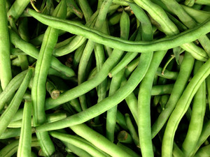 Fresh Green Bean Species