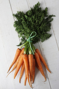 Fresh Harvested Carrots