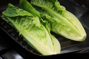 Fresh Lettuce Salad Leaves
