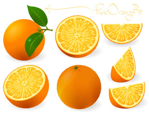 Fresh Orange Juice. Vector.