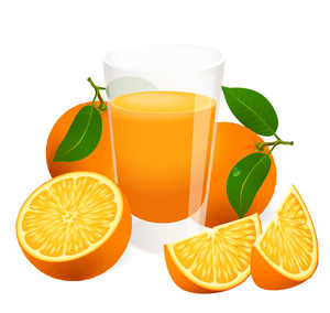 Fresh Oranges With Leaves And Orange Slices. Vector.
