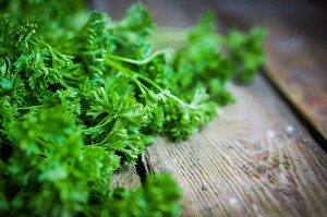 Fresh Parsley On Rustic Wooden Background