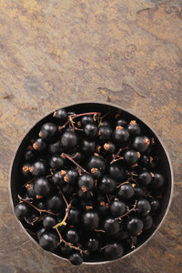 Fresh Picked Blackcurrants