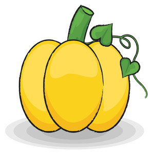 Fresh Pumpkin Vector