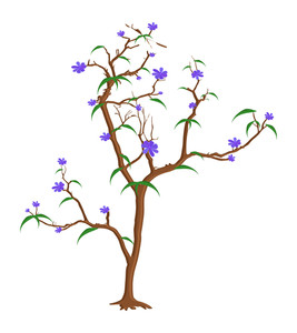 Fresh Purple Flowers Tree Branches