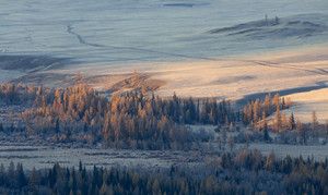 Frosty trees and a river in a valley at sunset