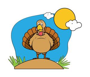 Funny Turkey Bird In Garden