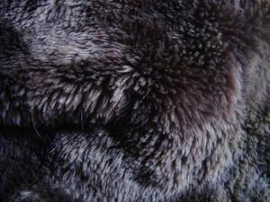 Fur_texture
