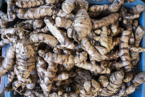 Galangal oil at asian market