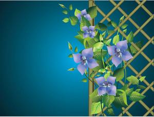 Garden Pergola Vector
