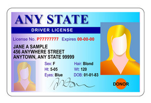Generic Female State Driver License