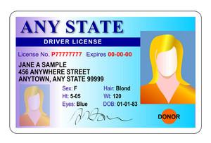 Generic Female State Driver License