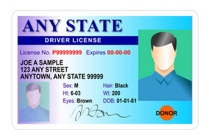 Generic Male State Driver License