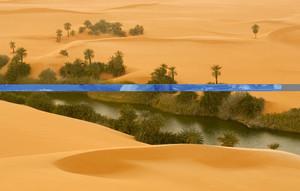 Gentle river and vegetation through a sandy desert