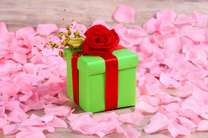 Gift box wrapped with the ribbon on rose petals