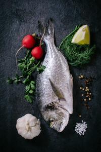 gilthead peixe