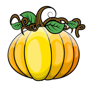 Glossy Fresh Pumpkin Vector Illustration