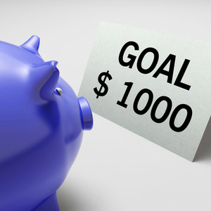 Goals Dollars Shows Aim Target And Plan