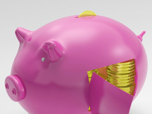 Gold Coins Shows Finances Wealth And Riches