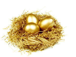 Gold Egg In The Gold Nest, Isolated On White