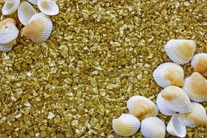 Golden Pebbles And Sea Shells