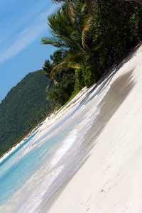 Gorgeous coconut palm trees overlook Flamenco beach on the Puerto Rican island of Culebra.