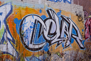 Graffiti spraypainted wall in an abandoned area with tall grass all around..