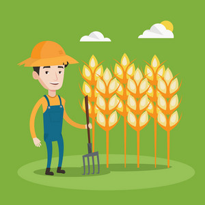 A happy farmer in summer hat standing with a pitchfork on the background of wheat field. Smiling man holding agricultural tool and working in wheat field. Vector flat design illustration. Square layout.