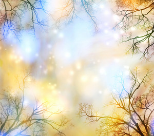 Abstract lights background with tree border (glowing yellow and blue)