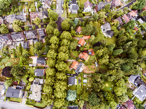 Aerial view of Dutch town, houses with gardens, green park with trees
