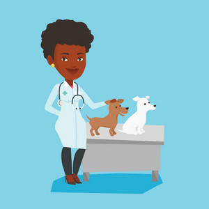 African-american veterinarian with stethoscope examining dogs in hospital. Female veterinarian with dogs at vet clinic. Concept of medicine and pet care. Vector flat design illustration. Square layout