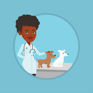 African-american veterinarian with stethoscope examining dogs in hospital. Veterinarian with dogs at vet clinic. Pet care concept. Vector flat design illustration in the circle isolated on background.