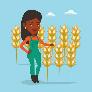 An african-american happy farmer standing on the background of wheat field. Smiling man working in wheat field. Farmer inspecting quality of wheat. Vector flat design illustration. Square layout.