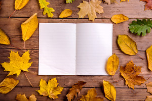 Autumn composition, empty notebook and colorful leaves. Studio shot on wooden background. Copy space.