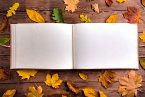 Autumn composition, empty photo album and colorful leaves. Studio shot on wooden background. Copy space.