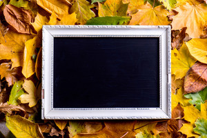 Autumn leaf composition with white picture frame with black board in it. Studio shot on wooden background. Copy space.