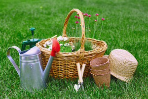 Basket with flowers and gardening equipment outdoors