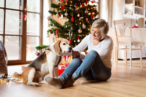 Beautiful senior woman sitting on the floor in front of Christmas tree with her dog.