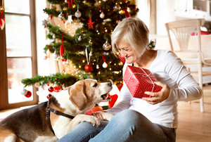 Beautiful senior woman sitting on the floor with her dog in front of Christmas tree opening presents inside in her house.