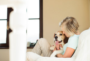 Beautiful senior woman with her dog at home sitting on couch, relaxing