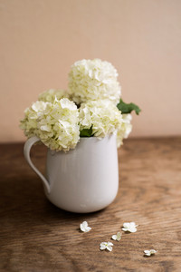 Beautiful white lilac bouquet in vase laid on table. Studio shot on wooden background. Copy space.