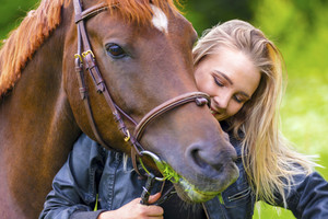 Beautiful woman feeding her arabian horse with grass in the field