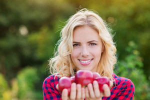 Beautiful young blond woman in checked red shirt harvesting apples, holding them in her hands